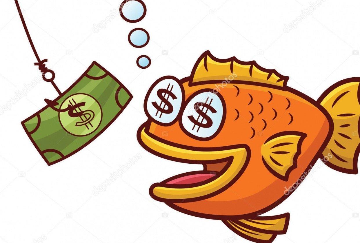 Fish Bait - student project