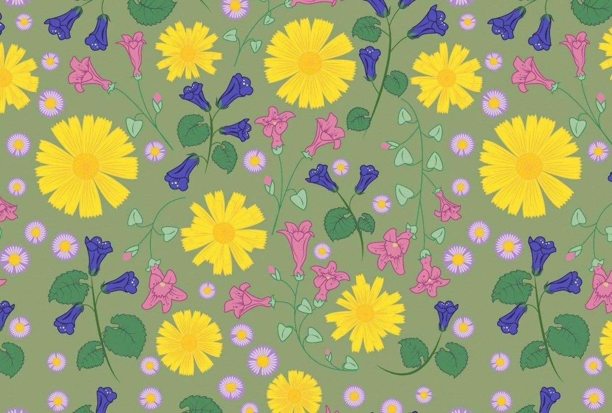 AZ Wildflowers - student project