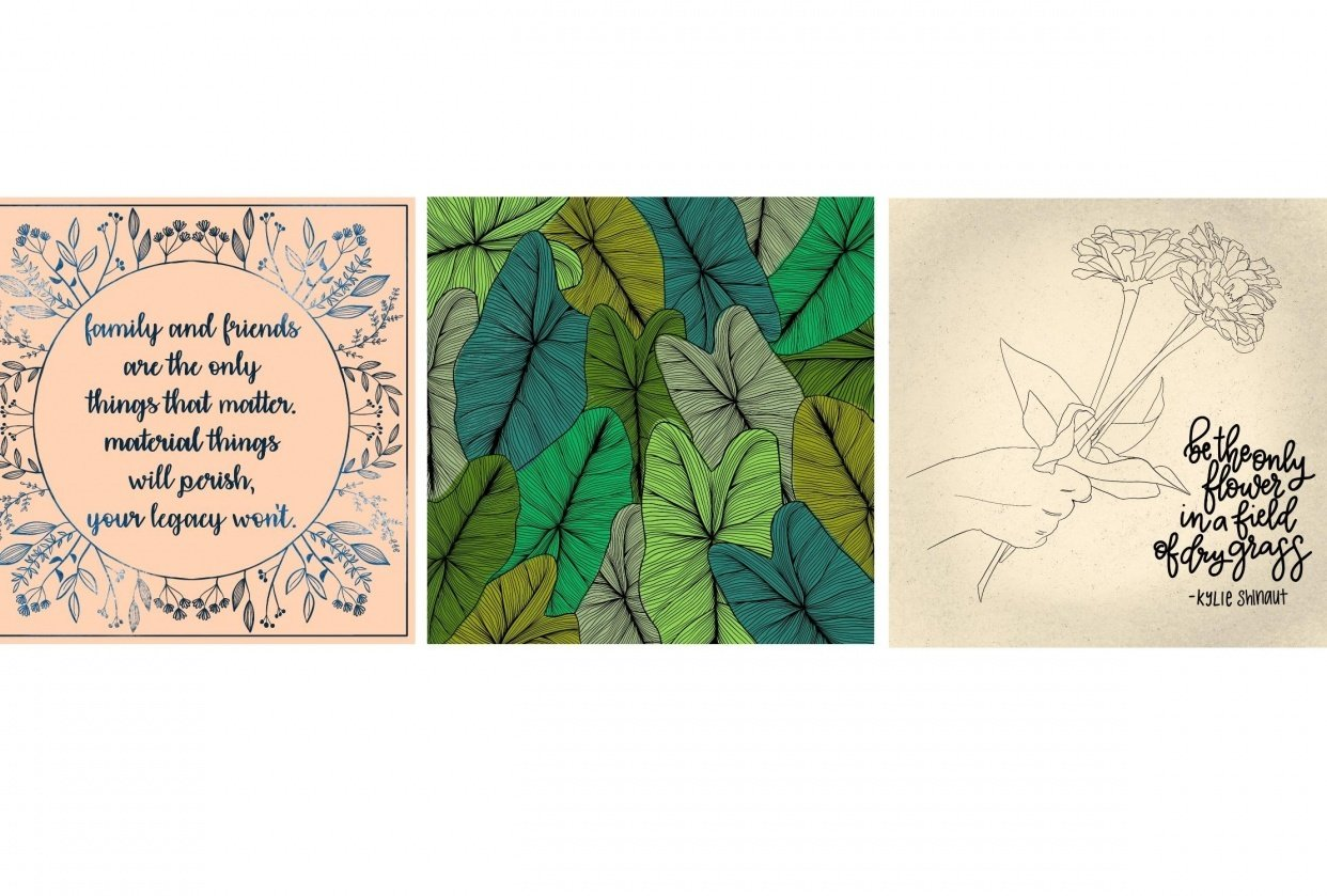 Botanical Drawings - student project