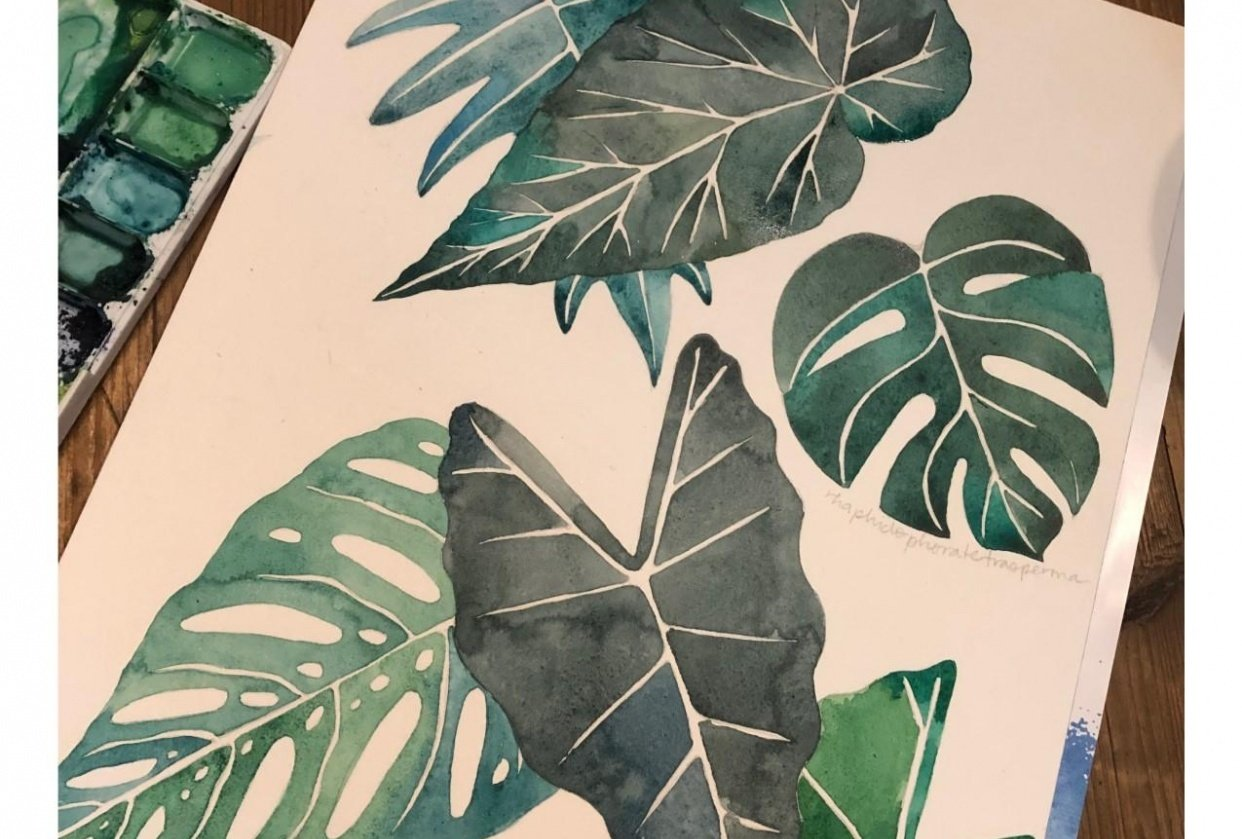 Tropical Leaves & Photoshop - student project
