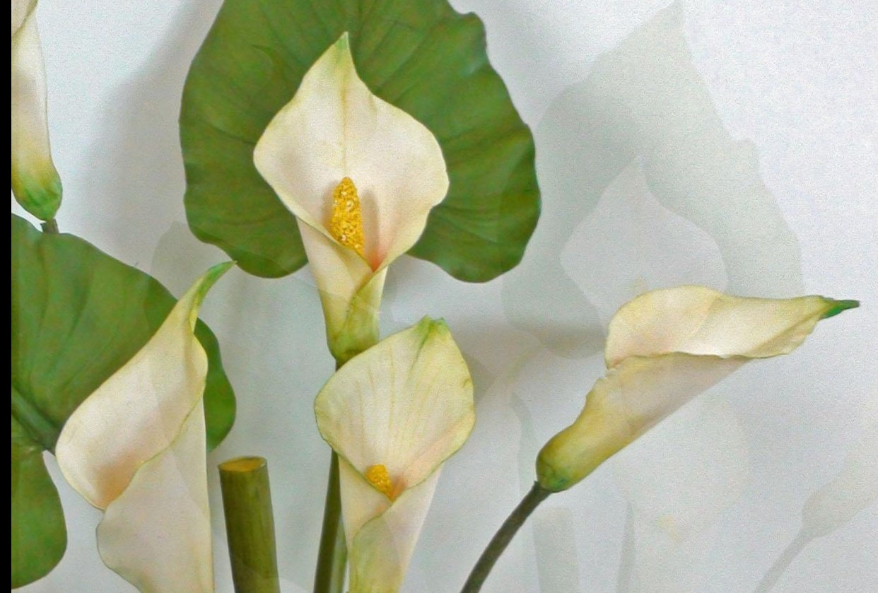 Callas in cold porcelain clay (air-dry-clay) - student project