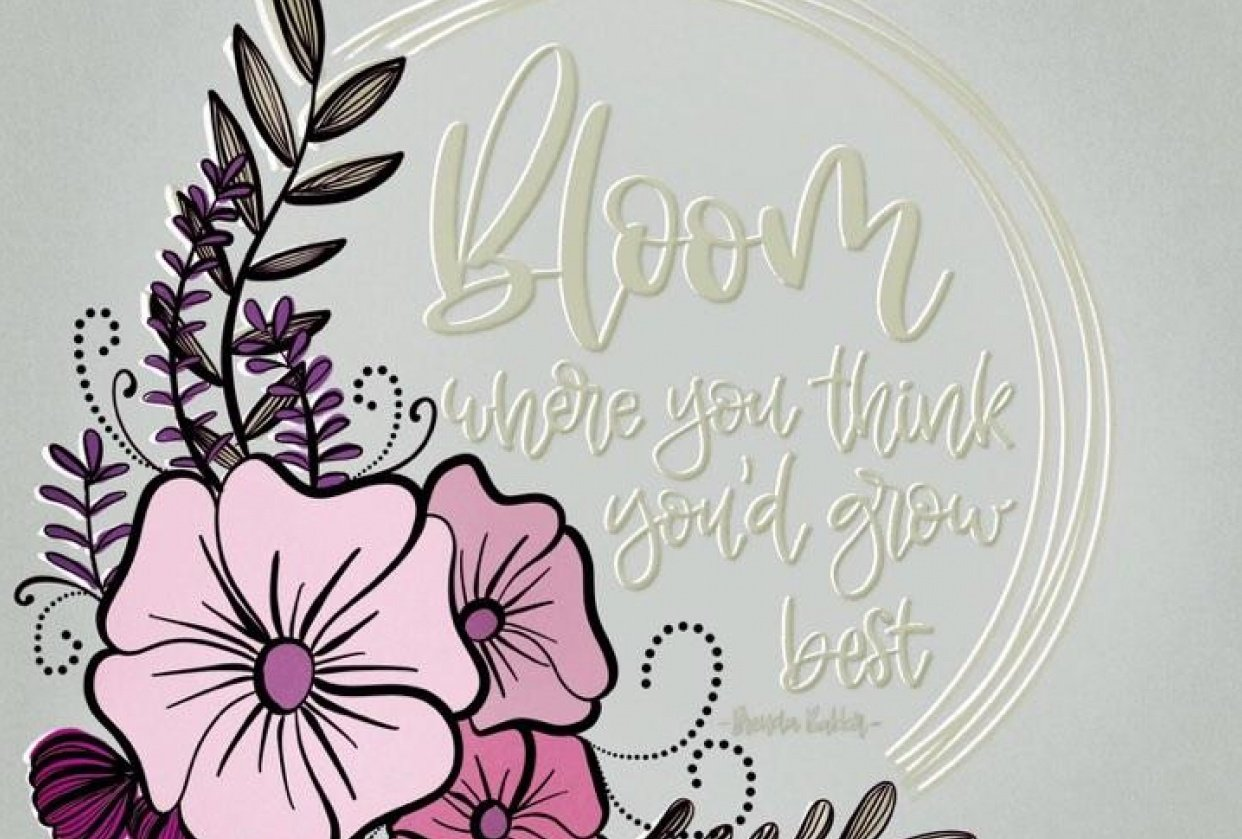 Bloom where you think you'd grow best. - student project