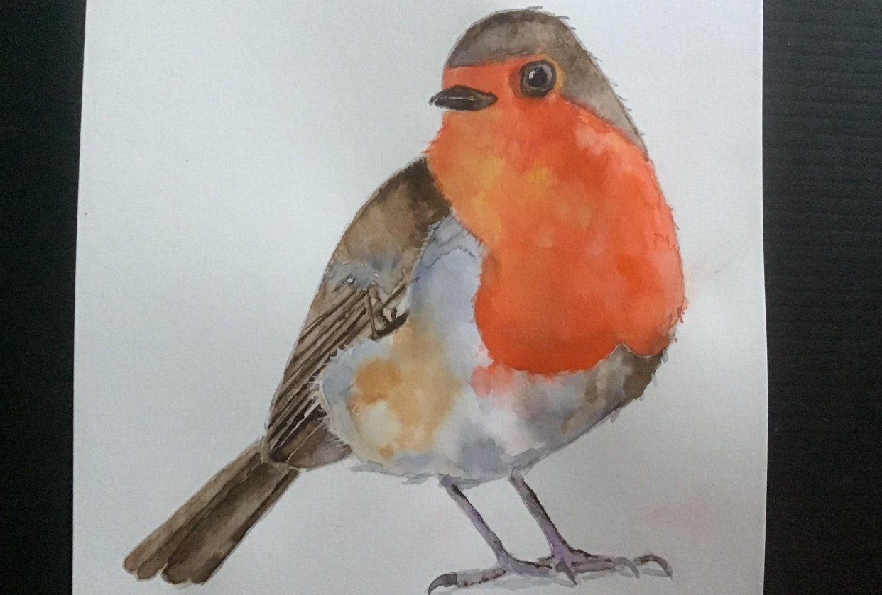 The robin - student project
