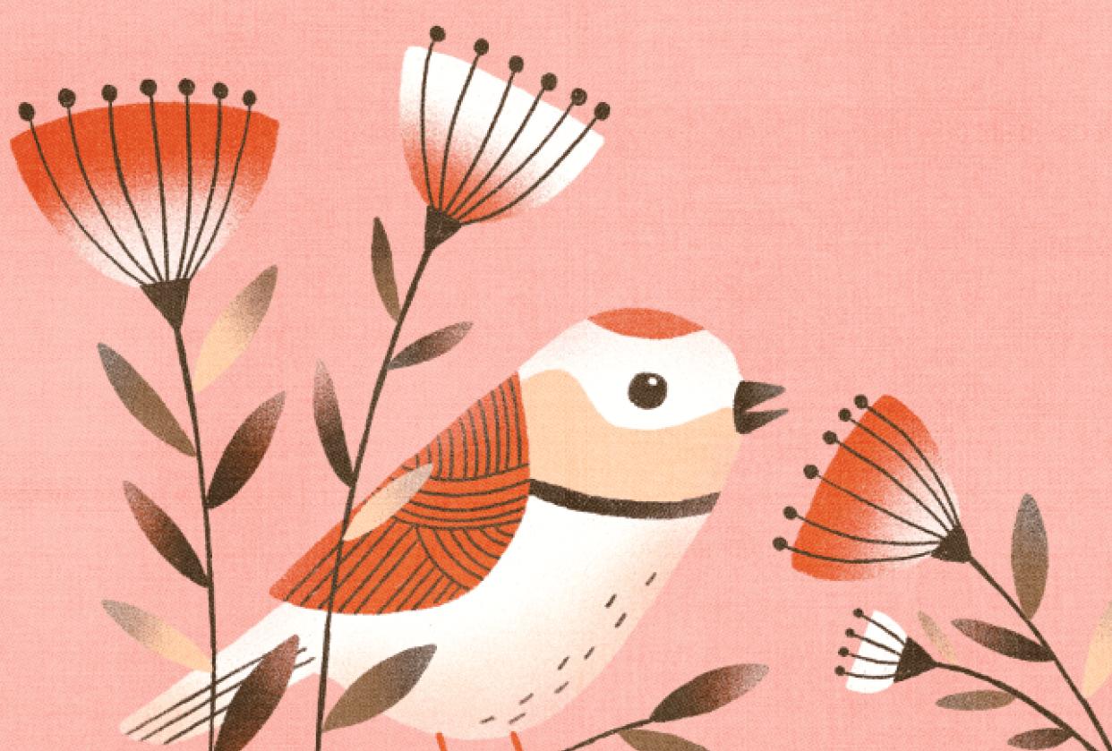 Procreate birdie - student project
