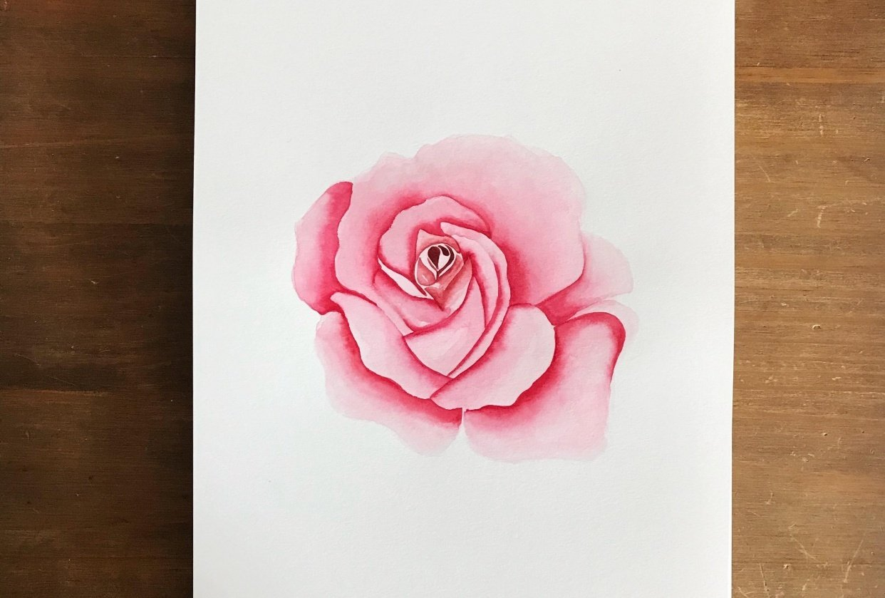 Roses, 3 ways - student project