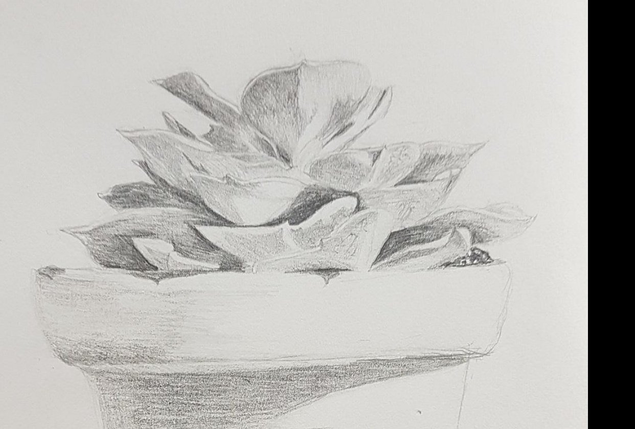 shading assignment - student project