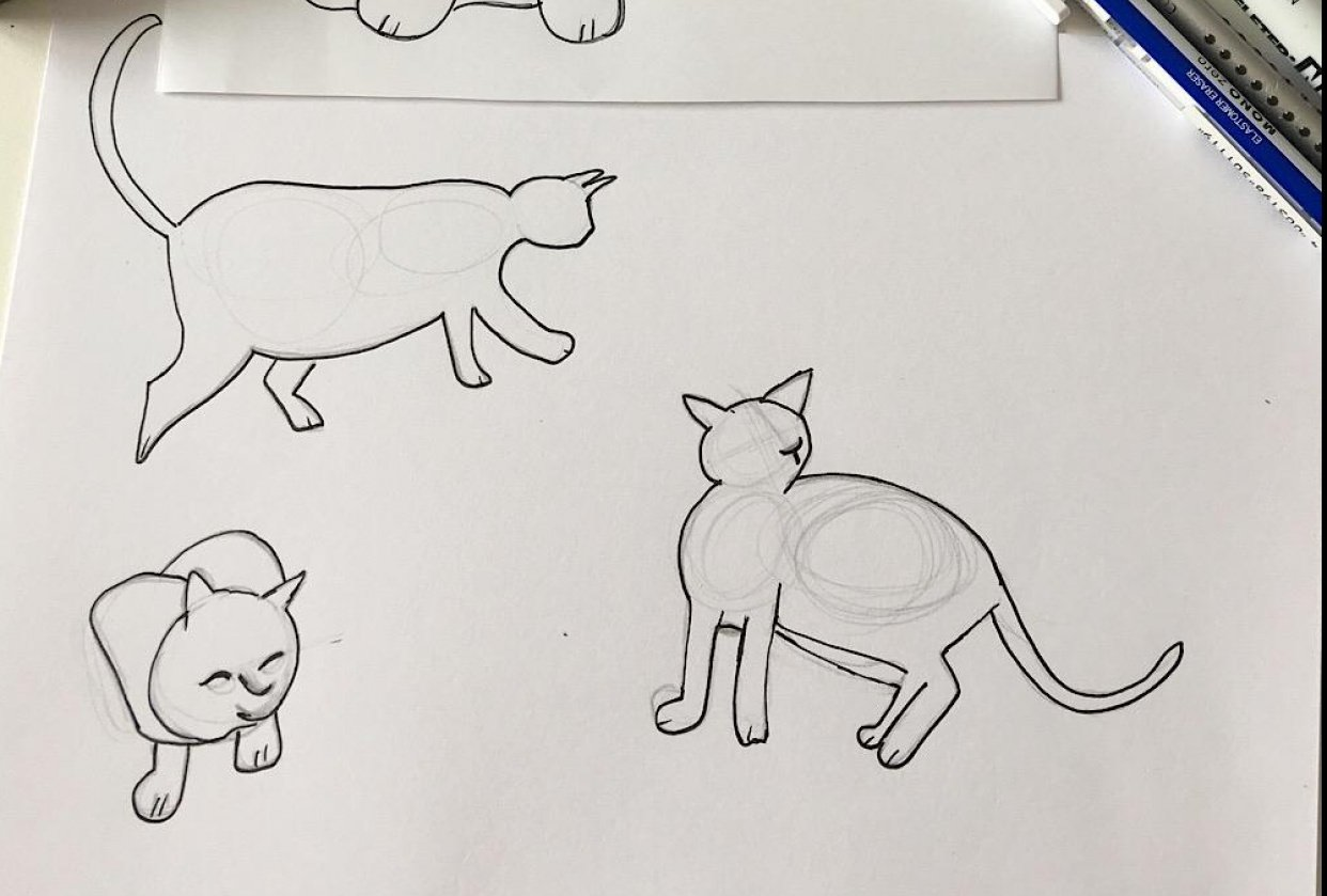 Cat on the move - student project