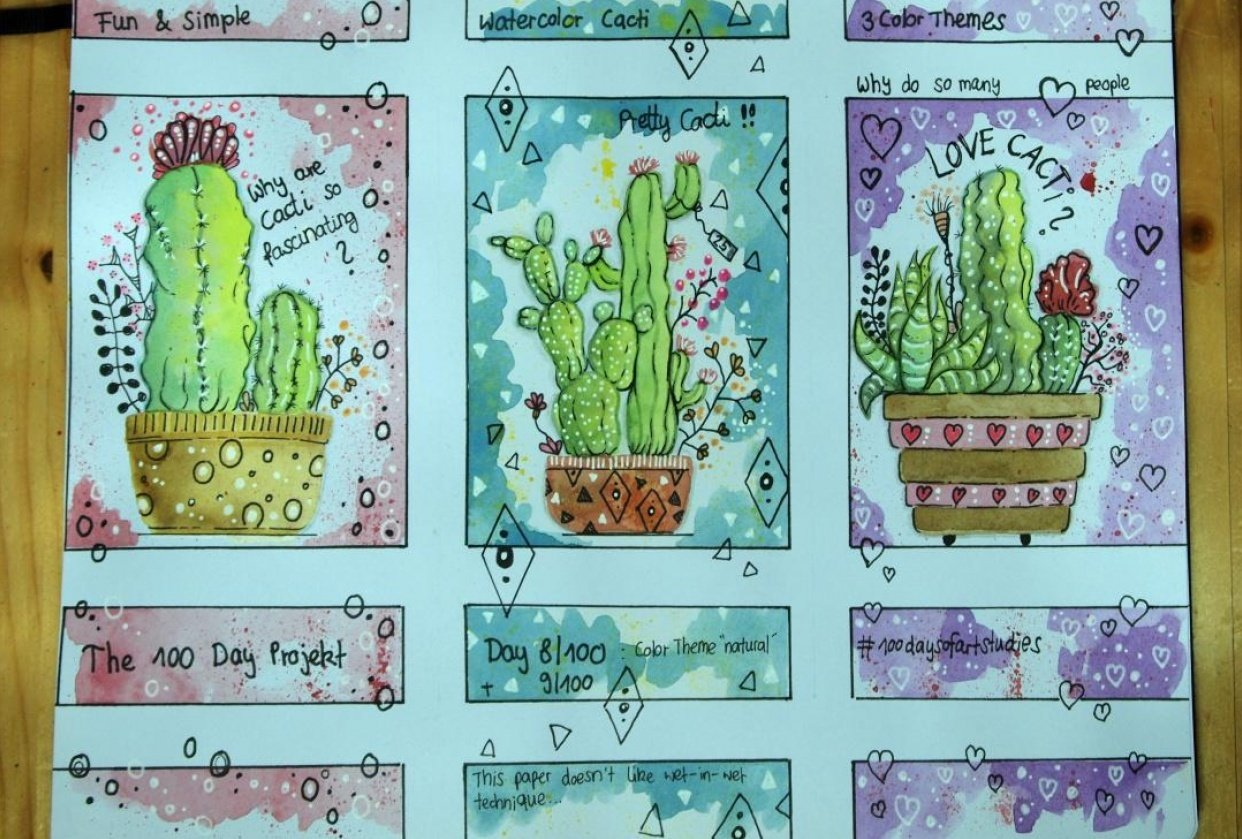 My cacti don't look quite as planned... - student project