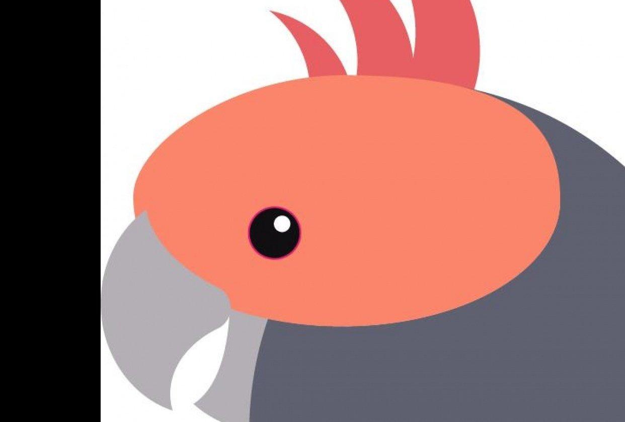 Circle Bird - student project
