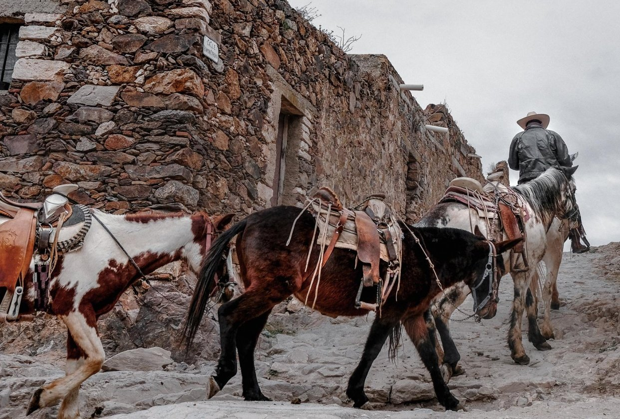 The Ghost village of Real de Catorce (MEX) - student project