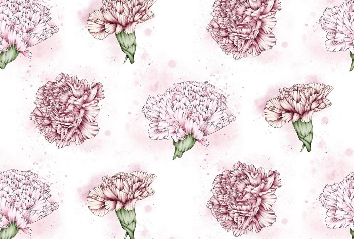 Pink Carnations - student project