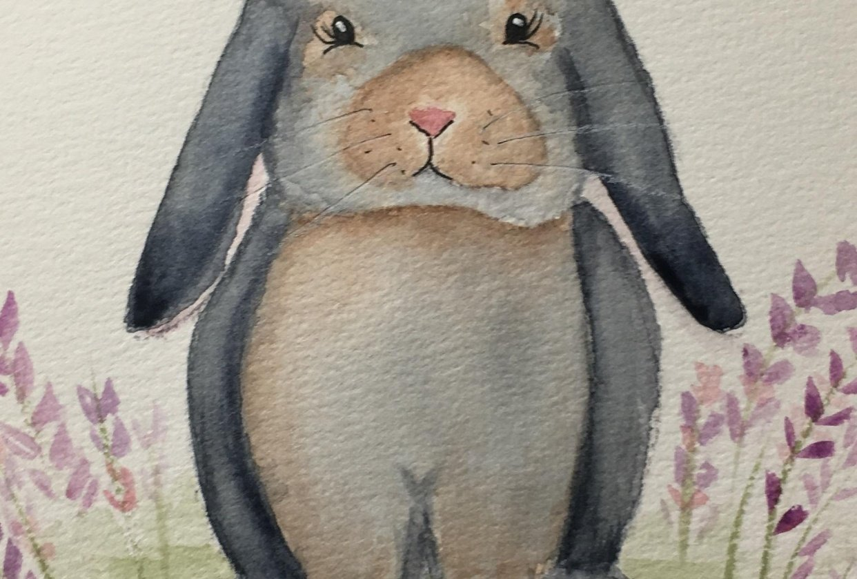 Gray Bunny - student project