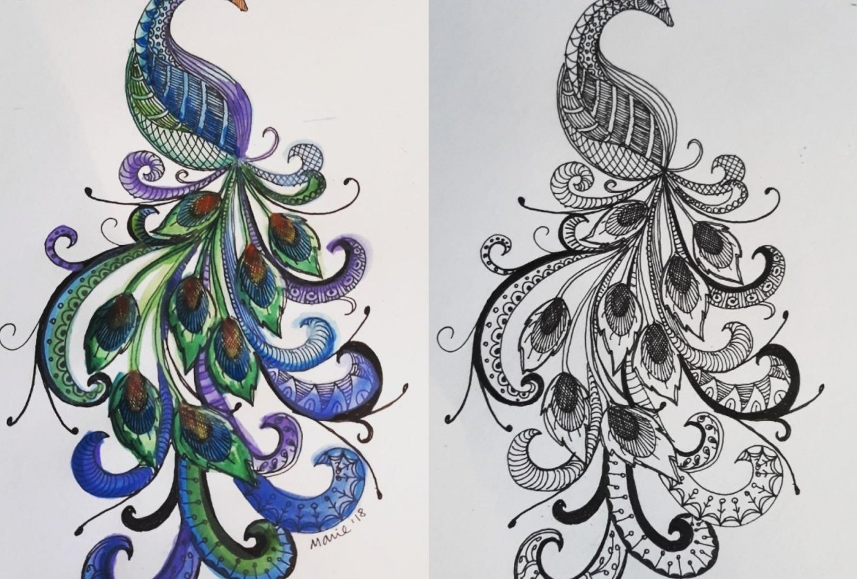 zentangle and watercolor - student project