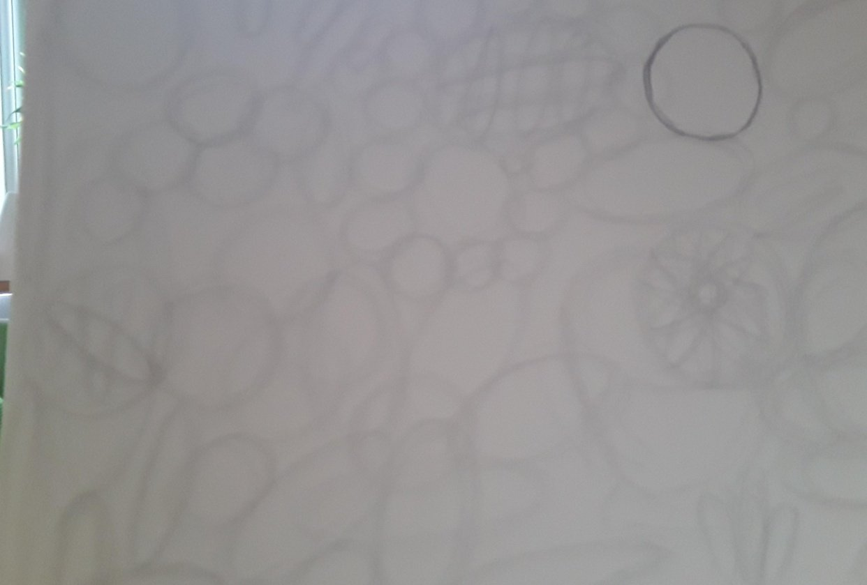 Circles and Ovals - student project