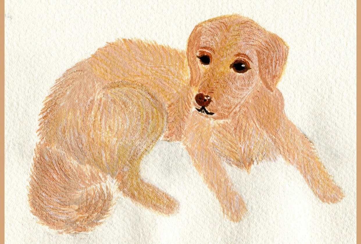 My first dog :) I had sooo much fun :):) - student project