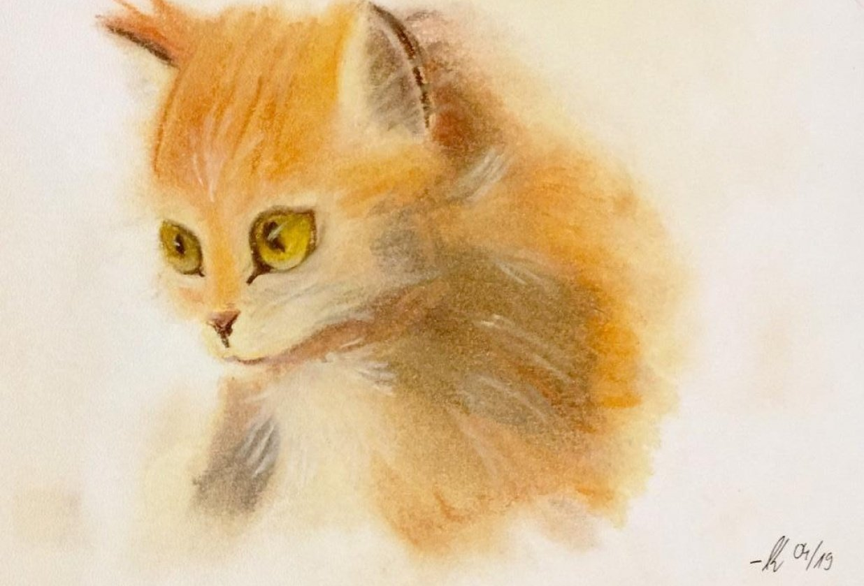 Ginger Kitty - student project