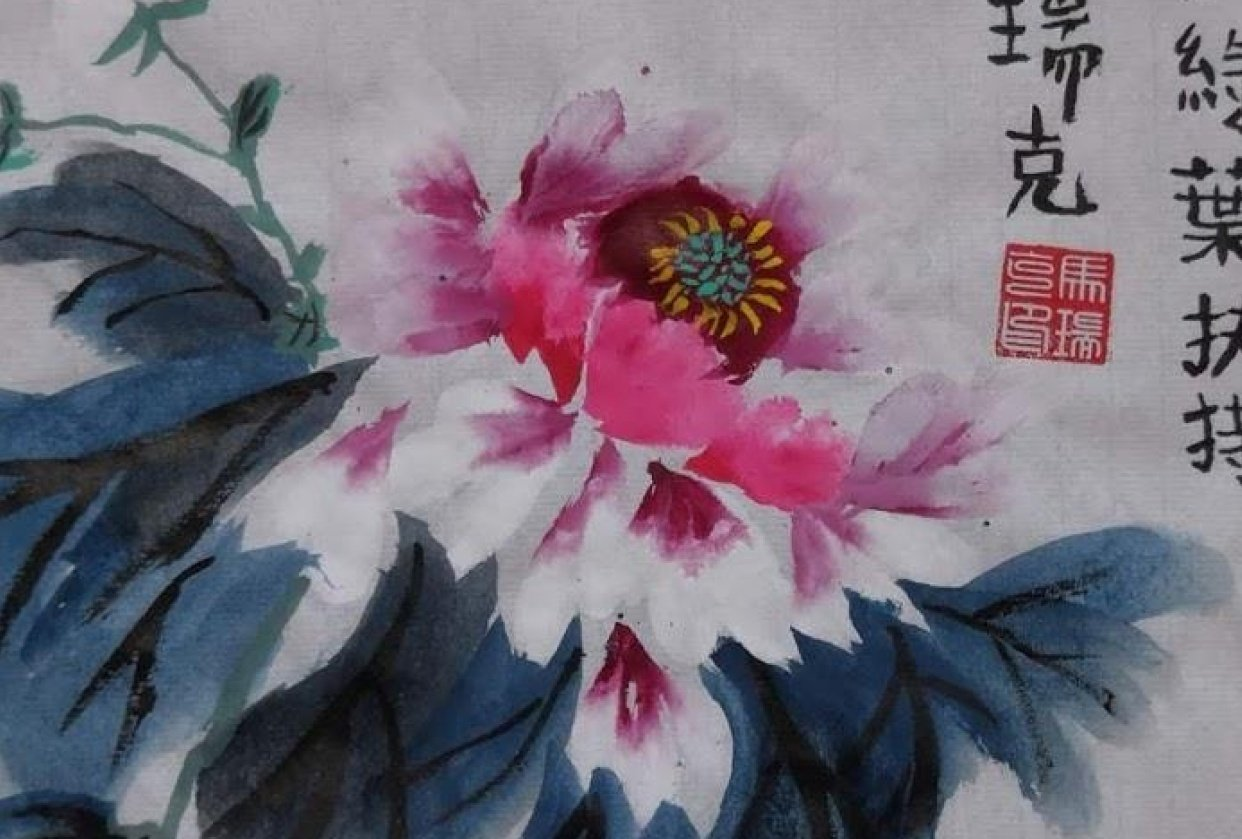 Chinese peony - student project
