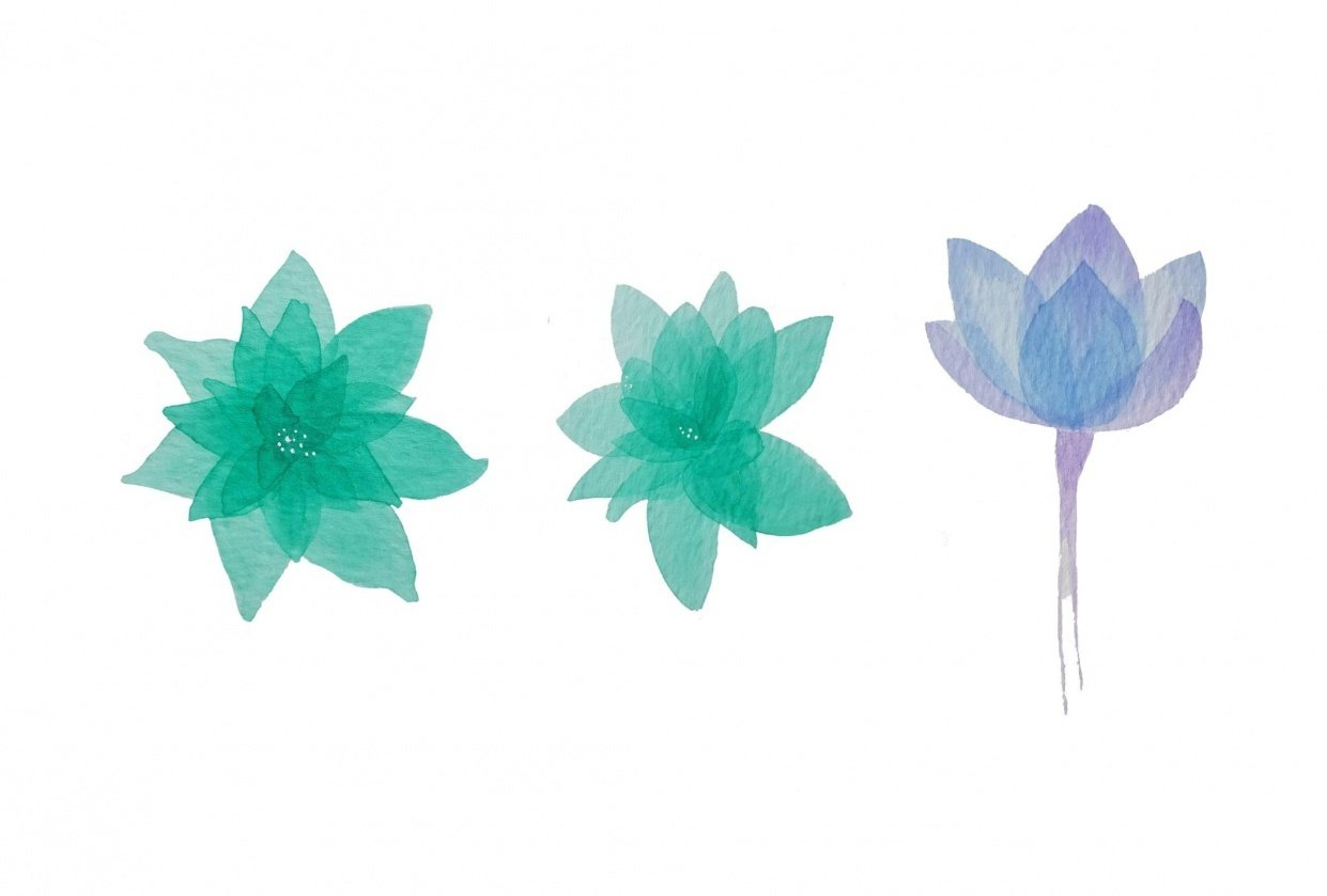 flores abstractas - student project