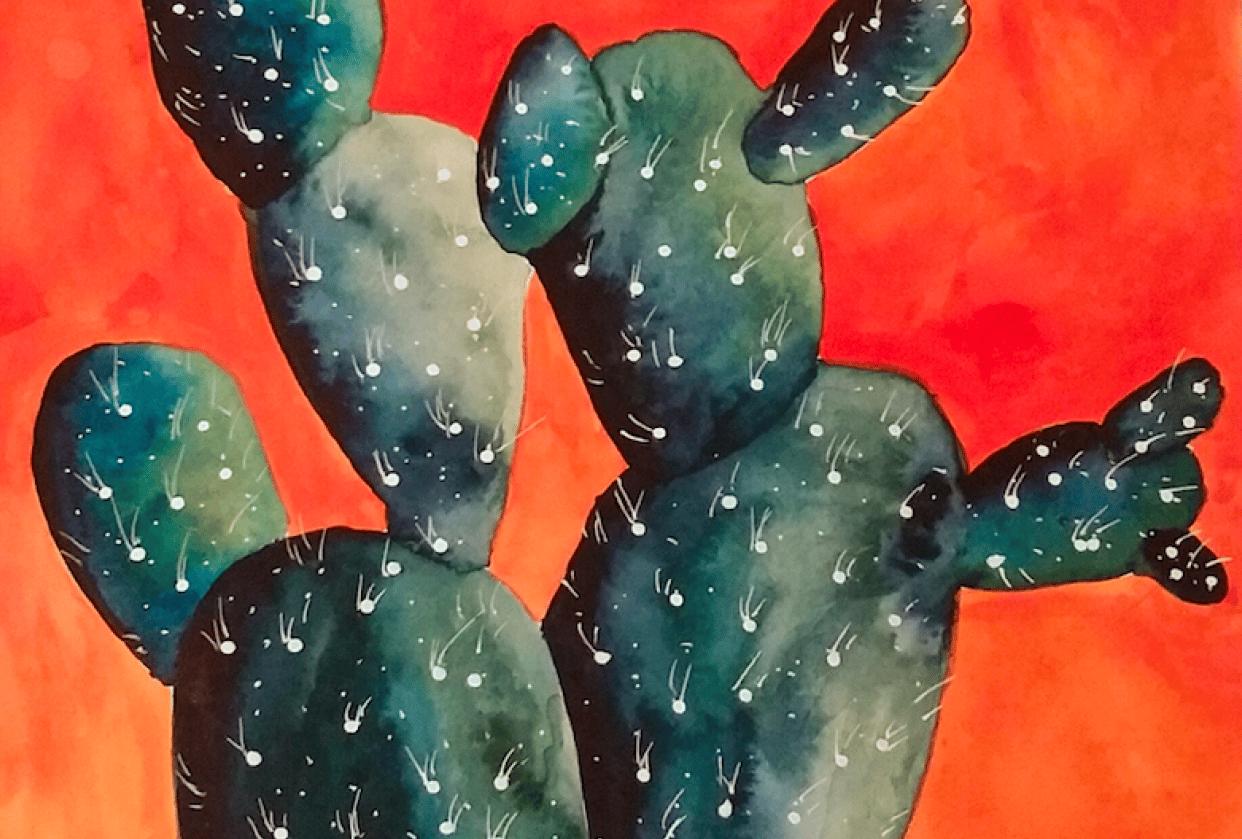 Cactus! Cactus! Cactus! - student project