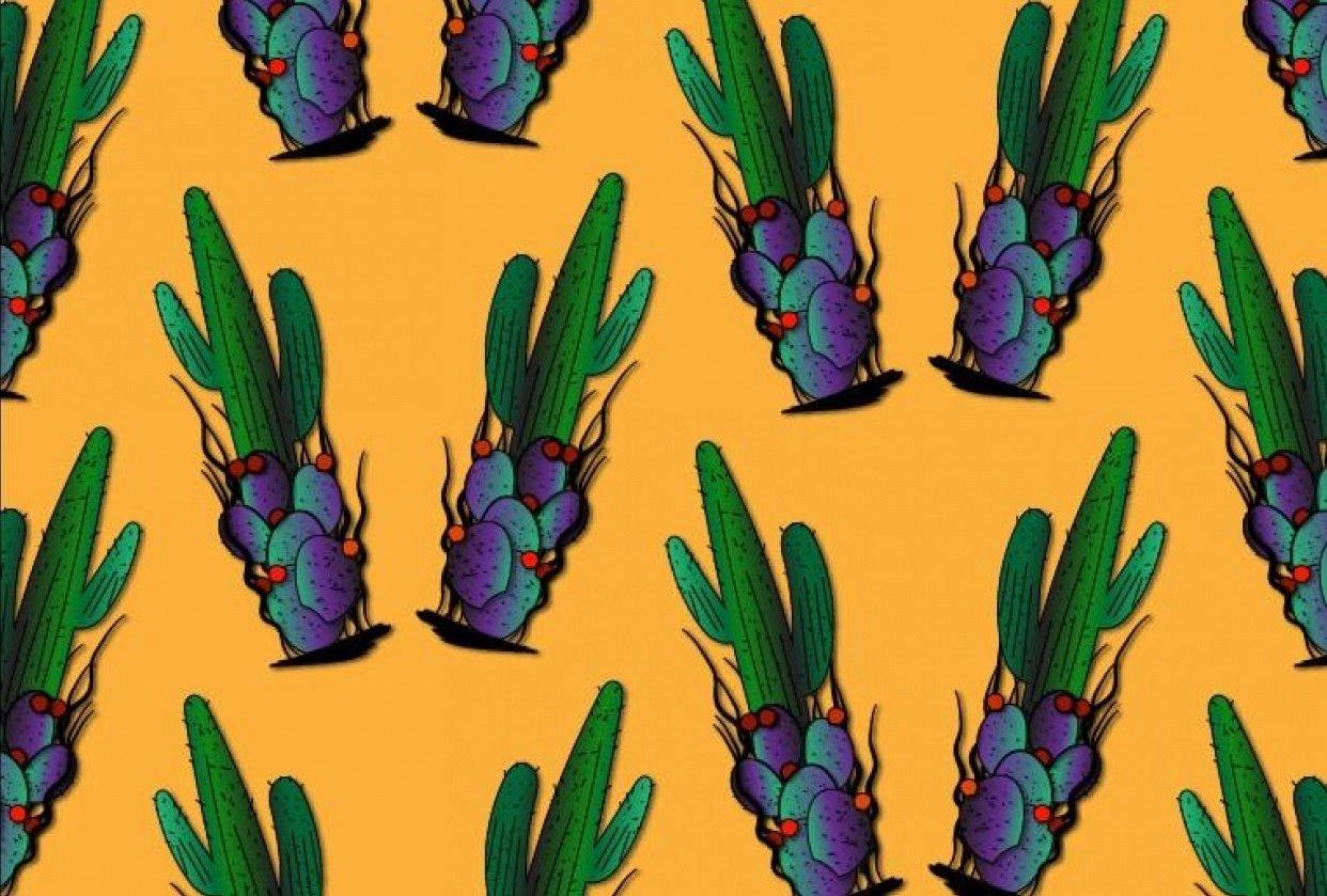 cactus pattern illustrator - student project