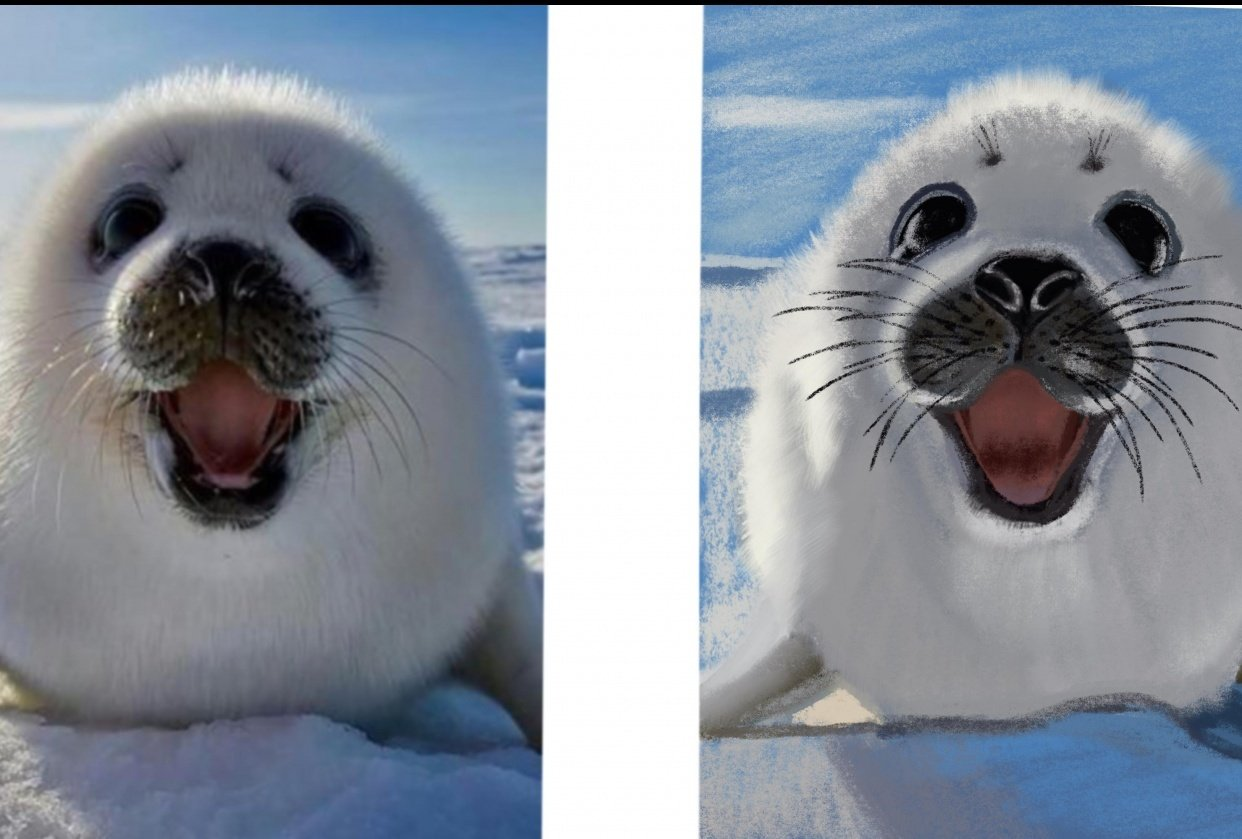 Seal baby - student project