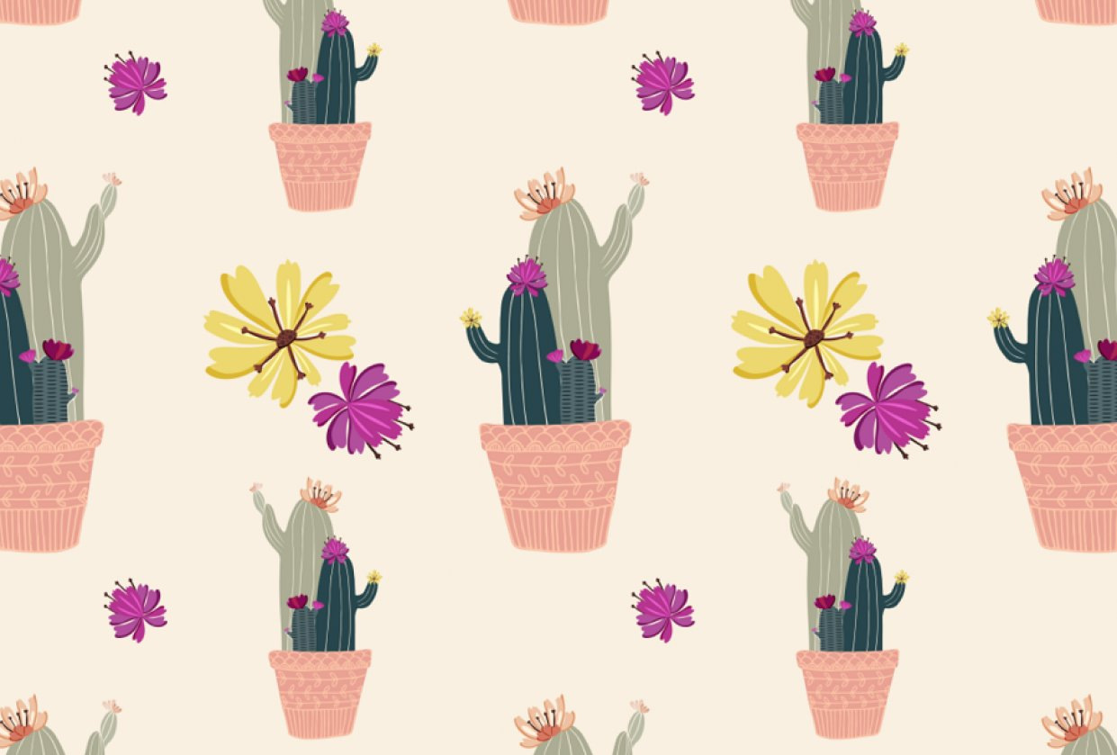 Cacti - student project