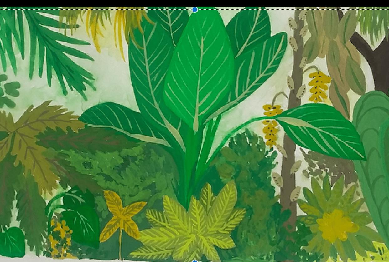 Gouache Jungle - student project