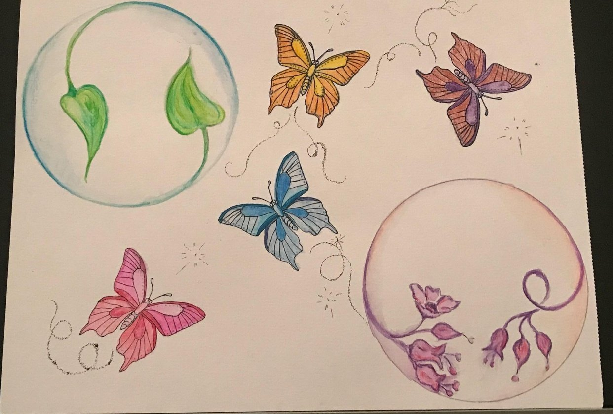 Time-Lapse of Watercolour Butterfly - student project