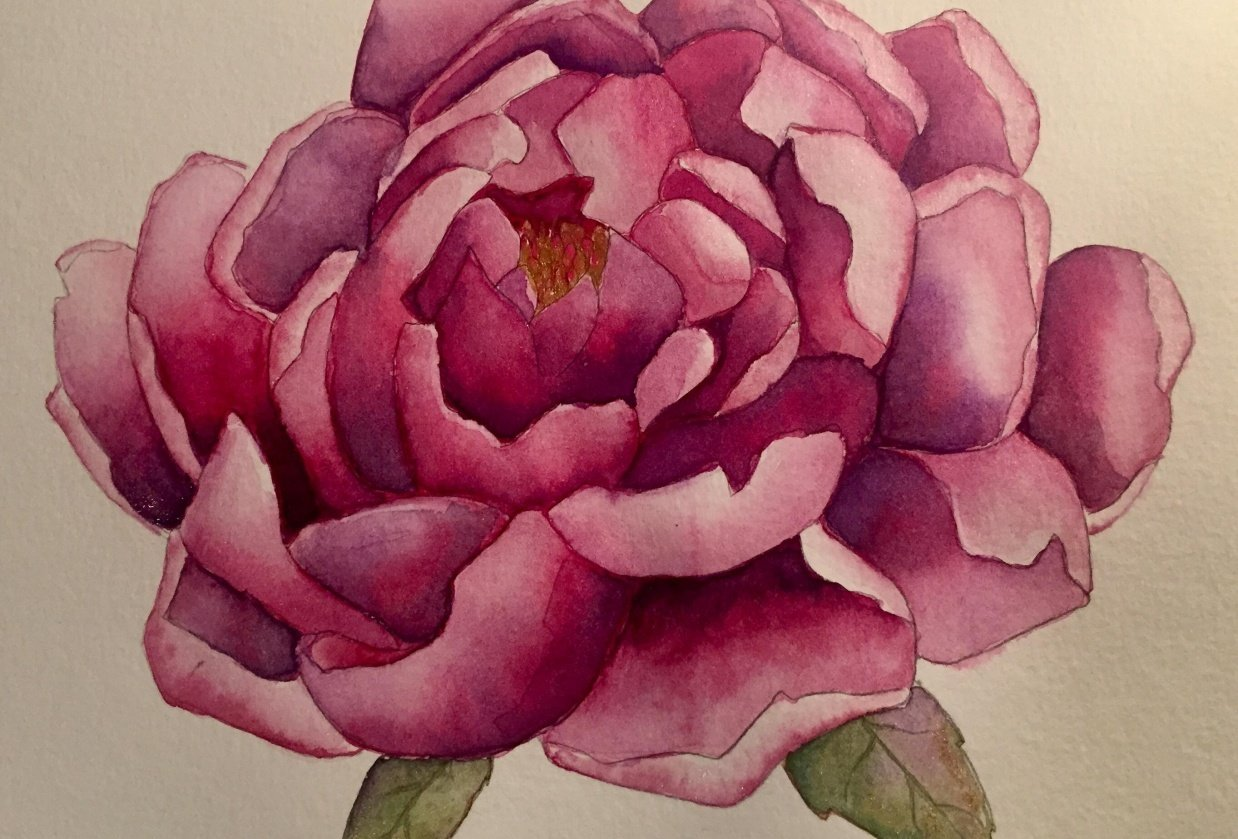 Purple/Magenta Peony for Audrey Ko Class - student project