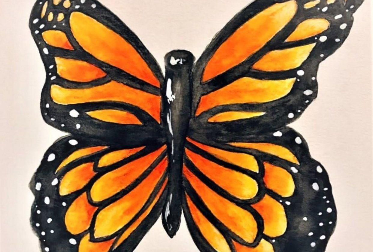 Butterfly Watercolor Pencils - student project