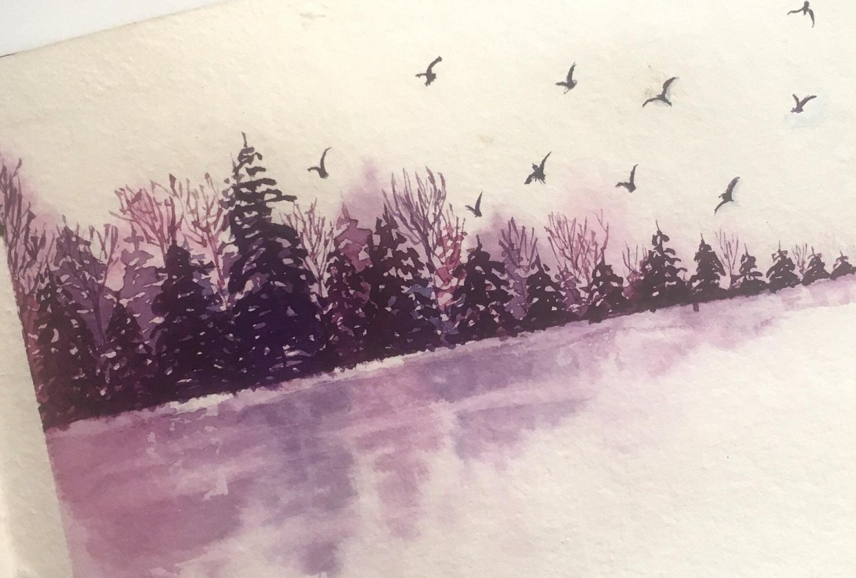 Pines by the lake - student project