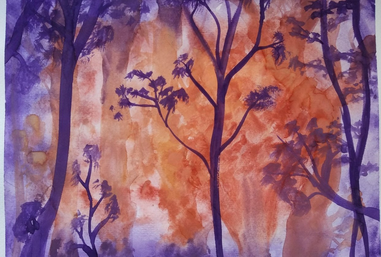 Purple/red/orange forest - student project