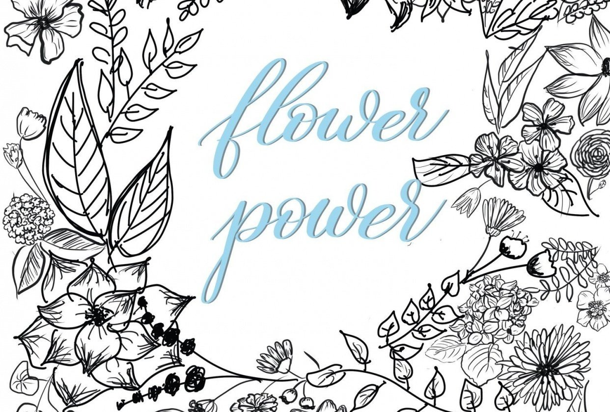 flower power / procreate drawing - student project