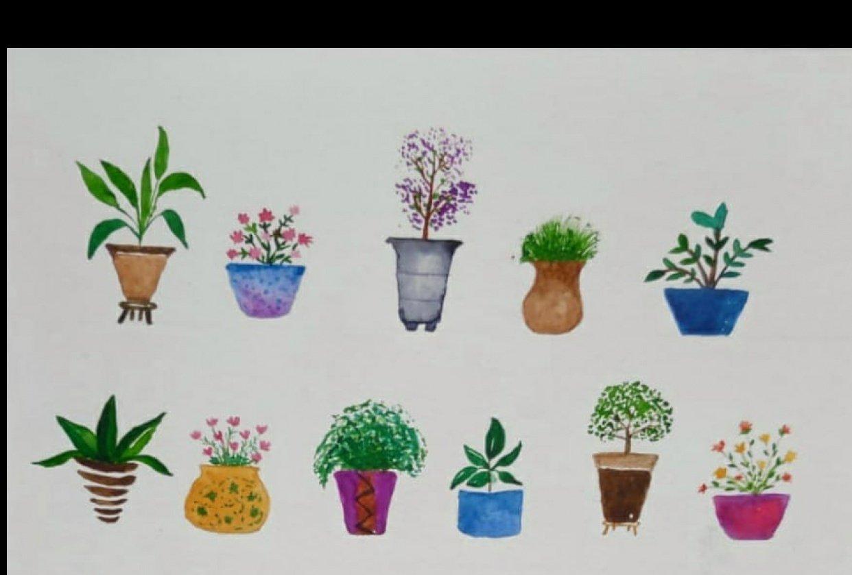 Watercolor Plant Pots - student project