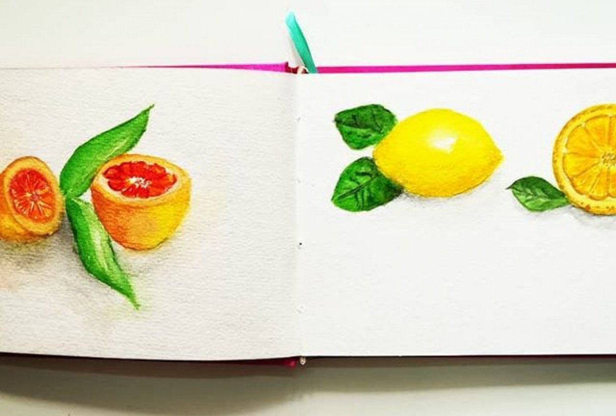 citrus fruits drawing - student project