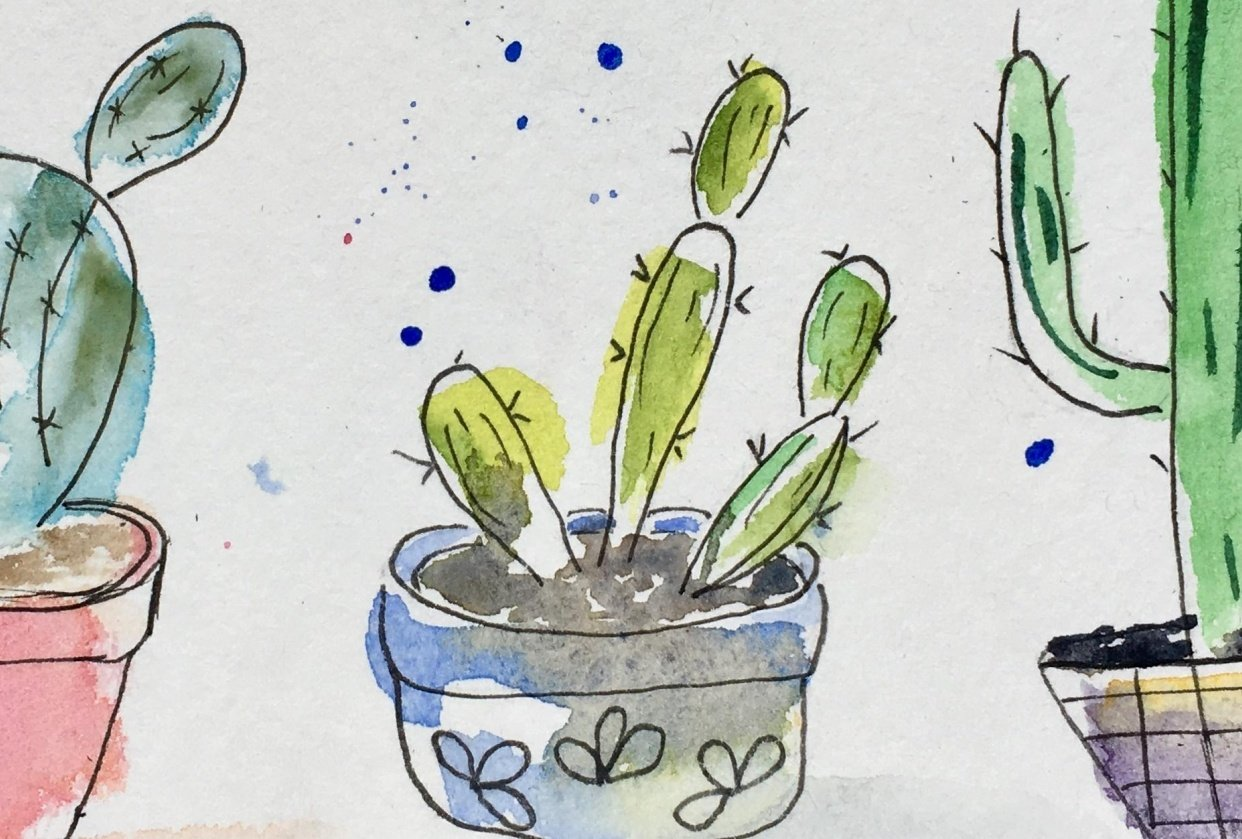 Prickly Cactus - student project