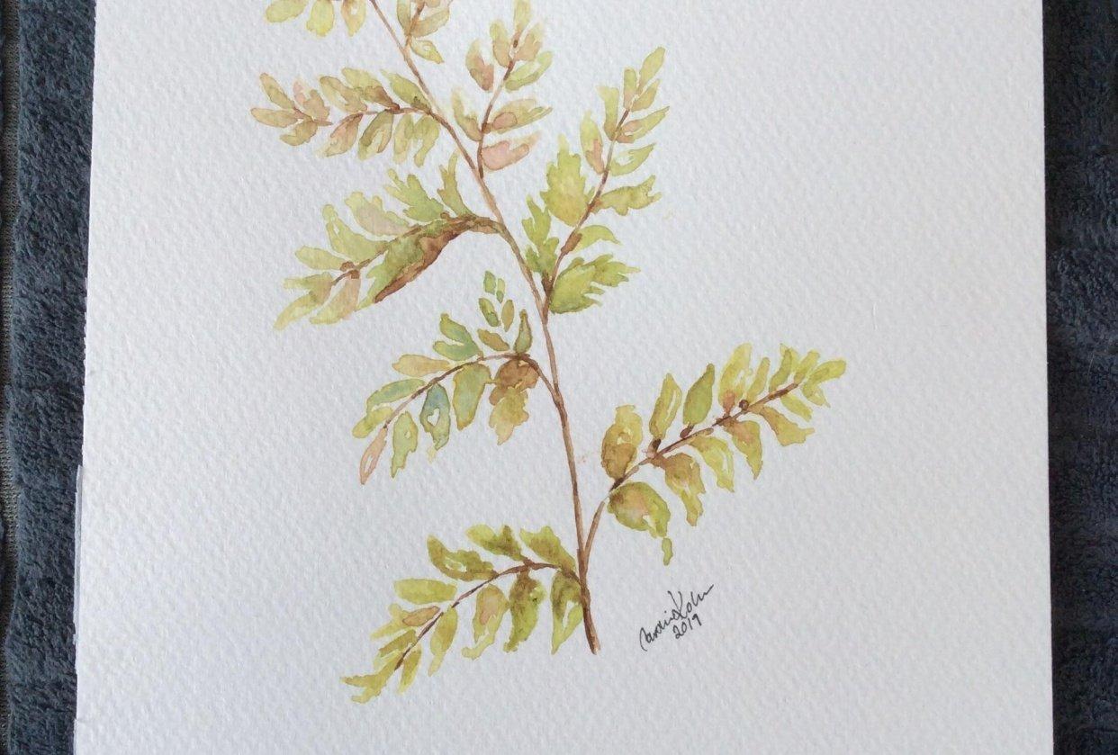 Vintage botanical greens - student project