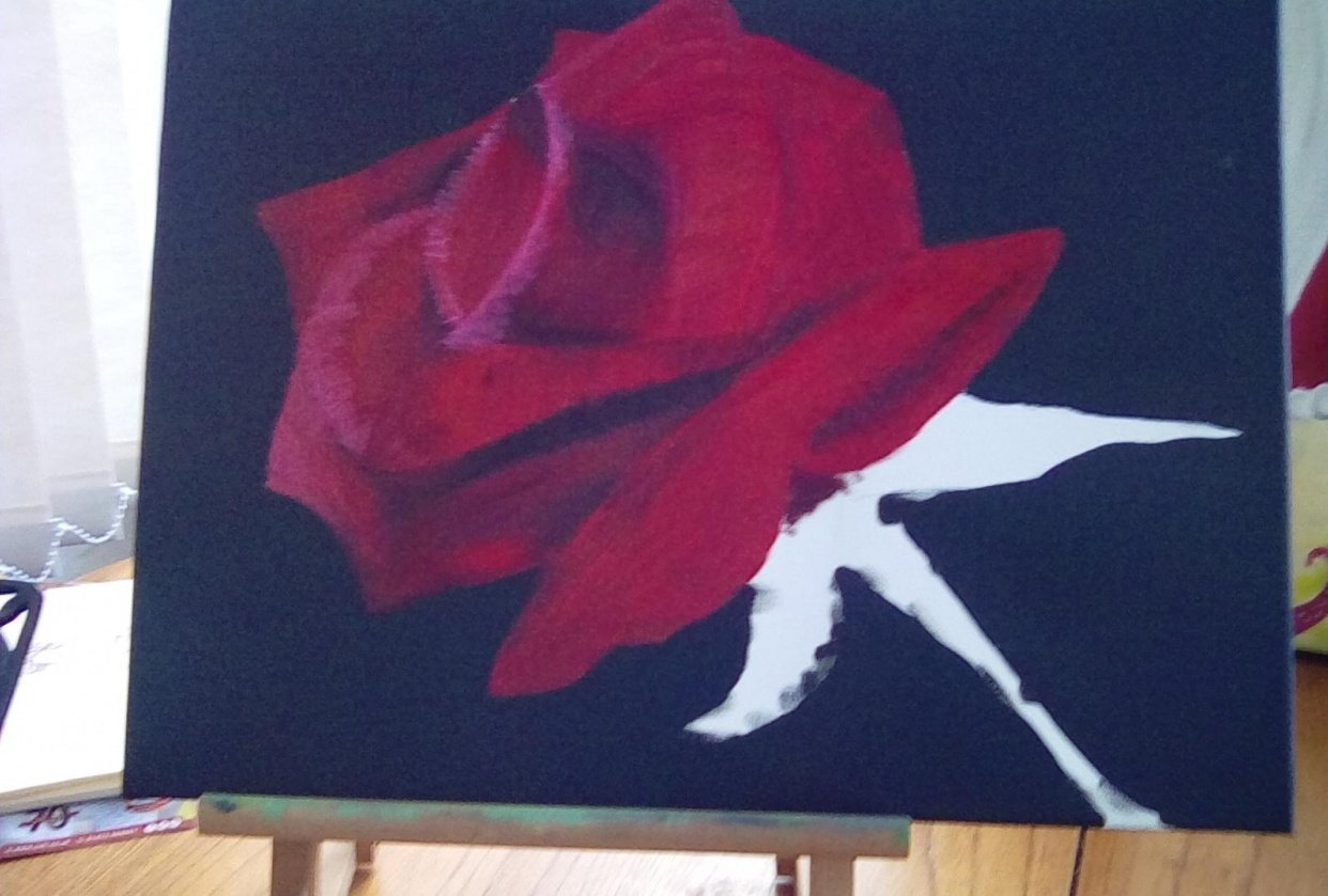 Red rose - student project