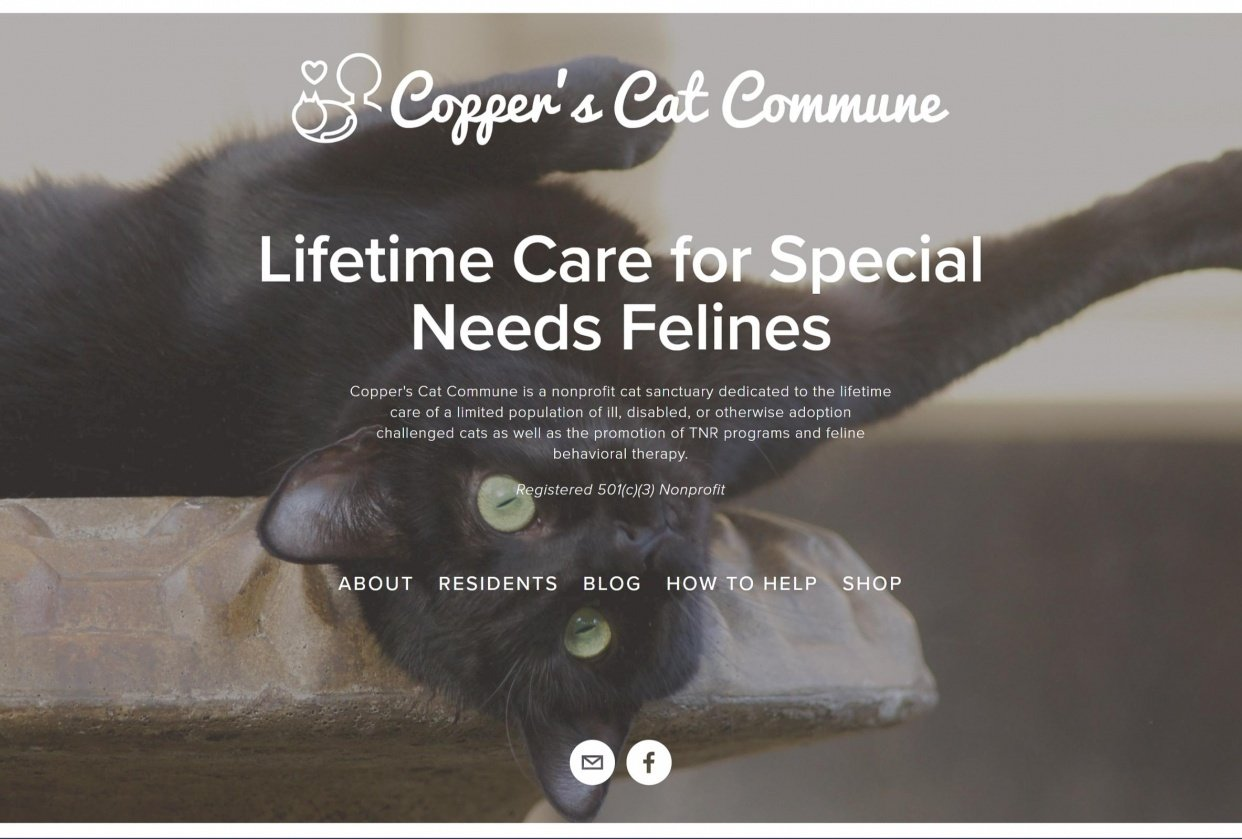 Copper's Cat Commune - student project