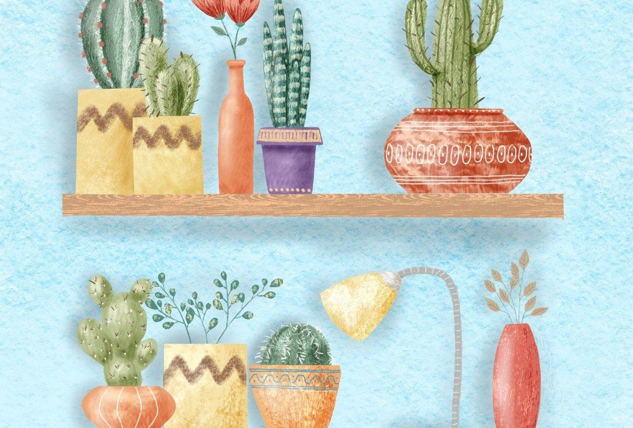 Cactus Shelf Garden - student project