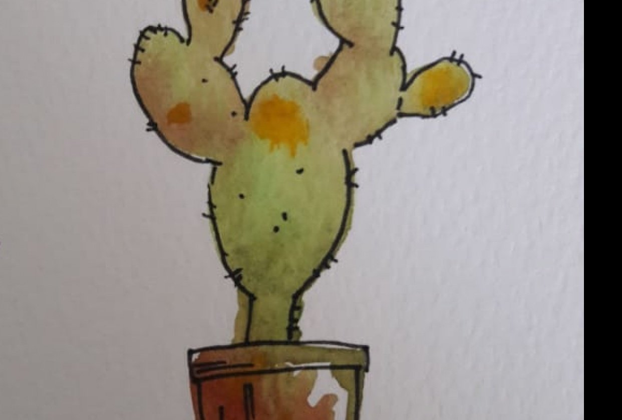 The cactus - student project