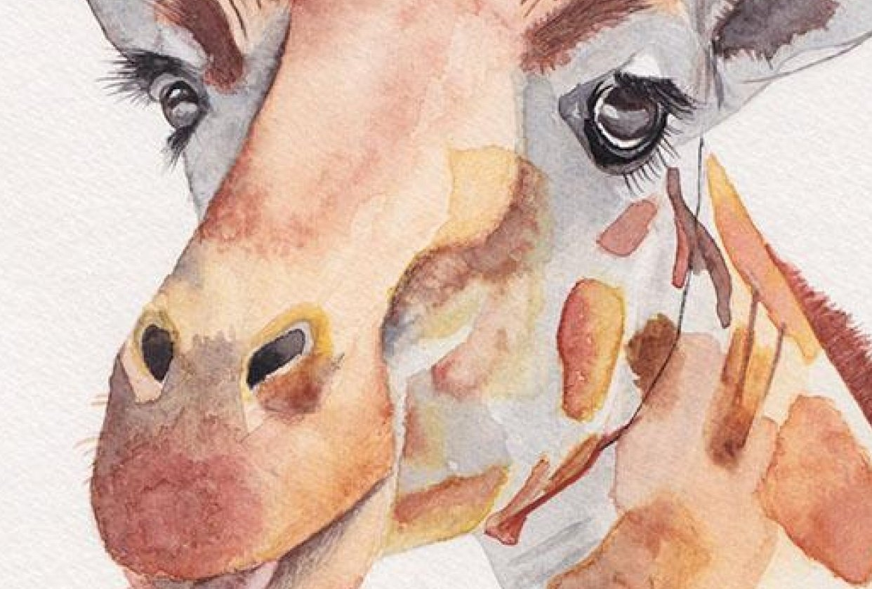 My first watercolour painting: A giraffe - student project