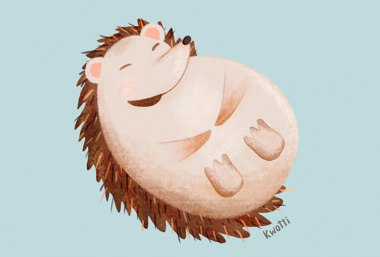 Cute Hedgehog - student project