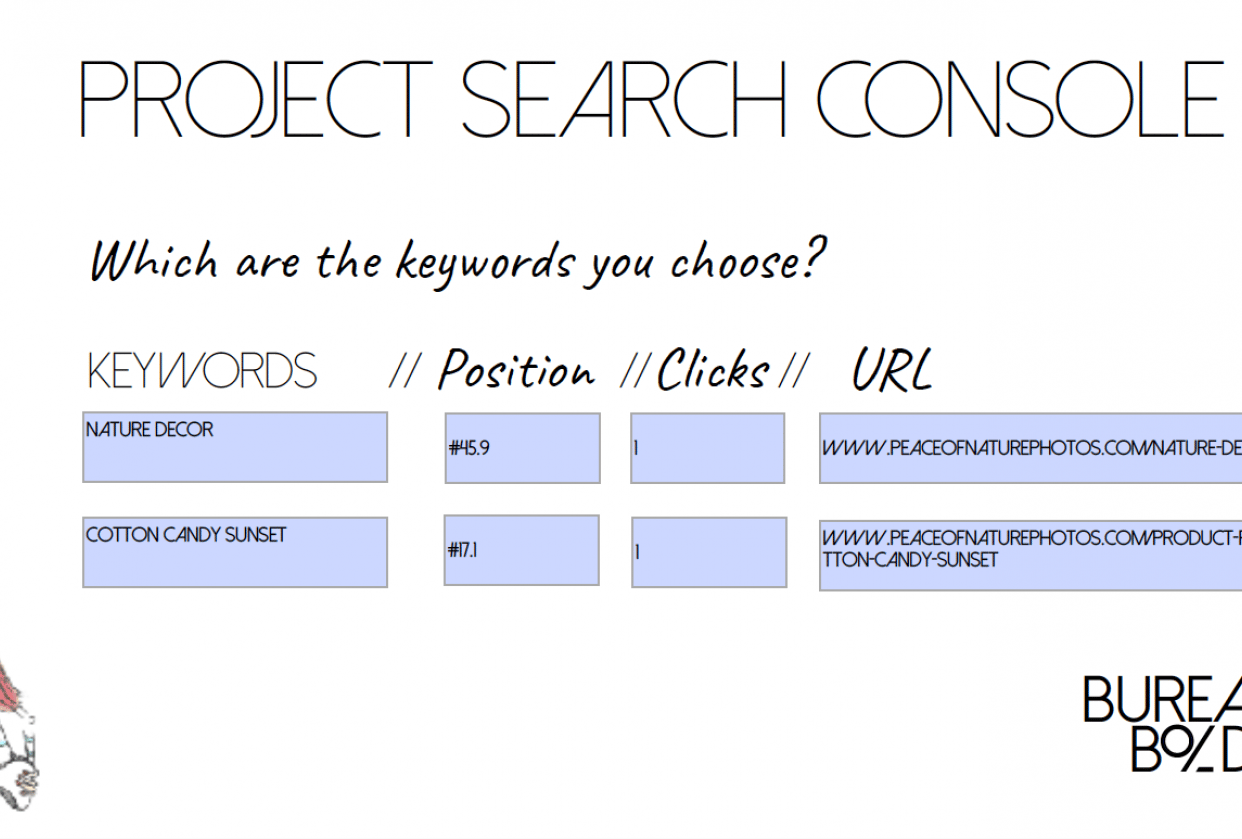 Project Search Console - student project