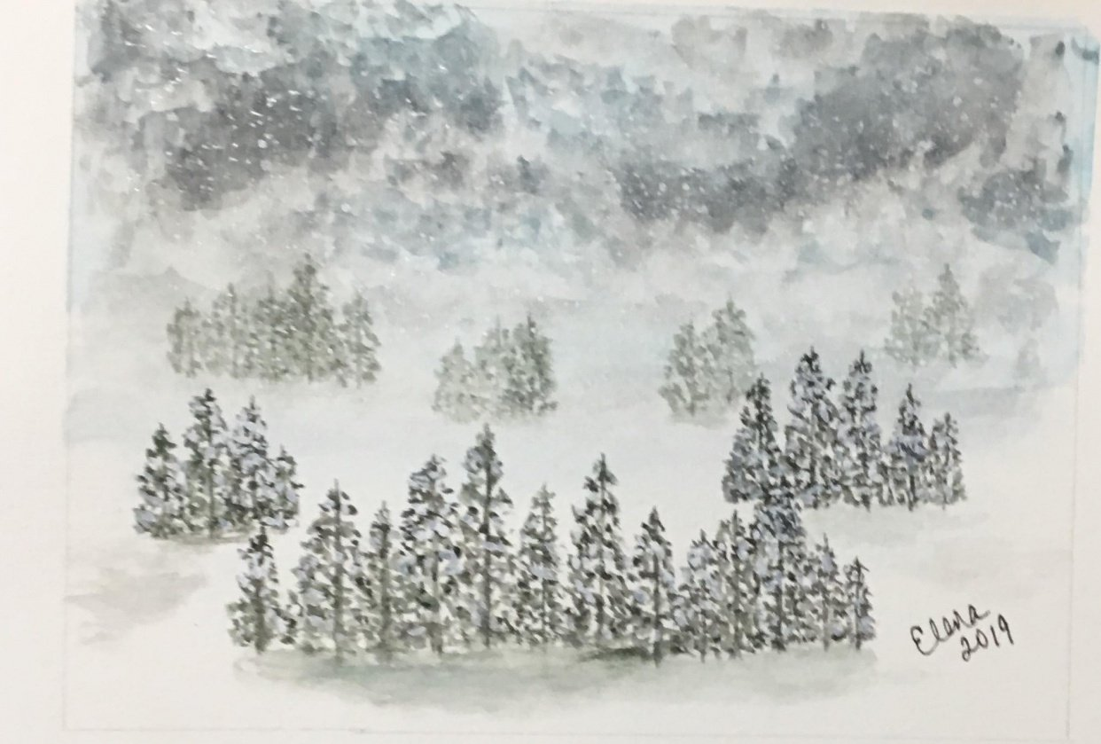 Snowy Trees - student project