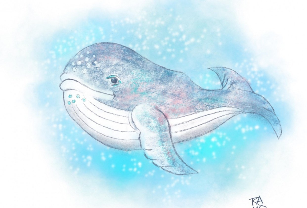 Whale of a class - student project
