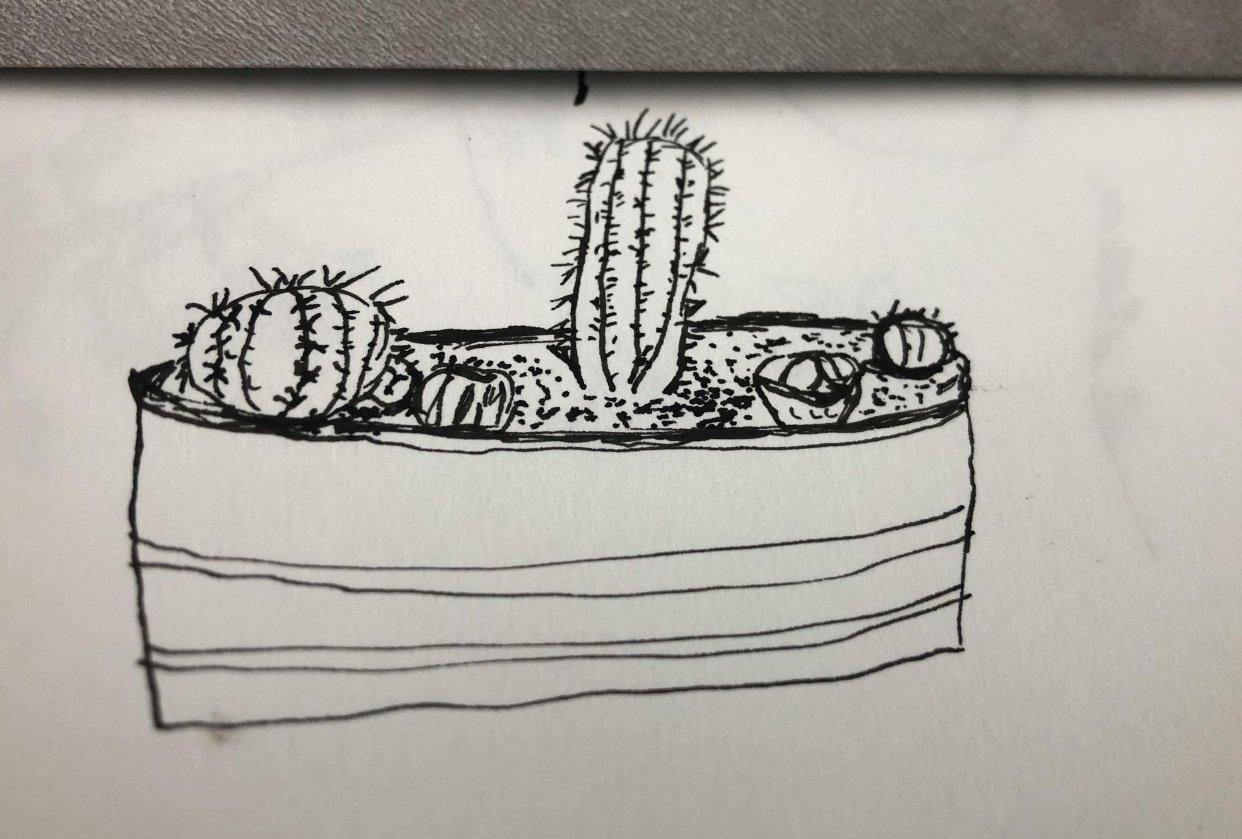 desert pot - student project