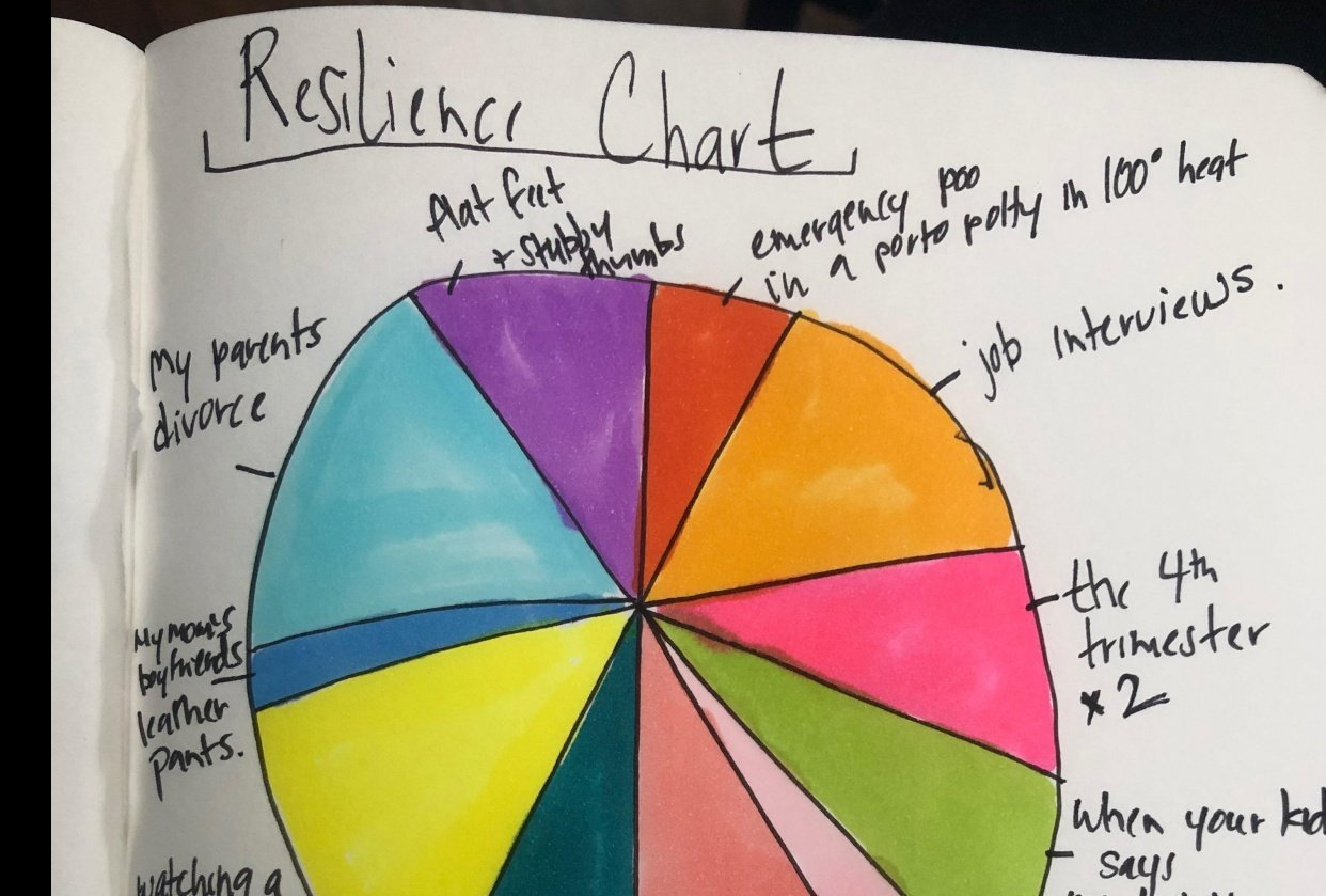 Resilience Chart - student project