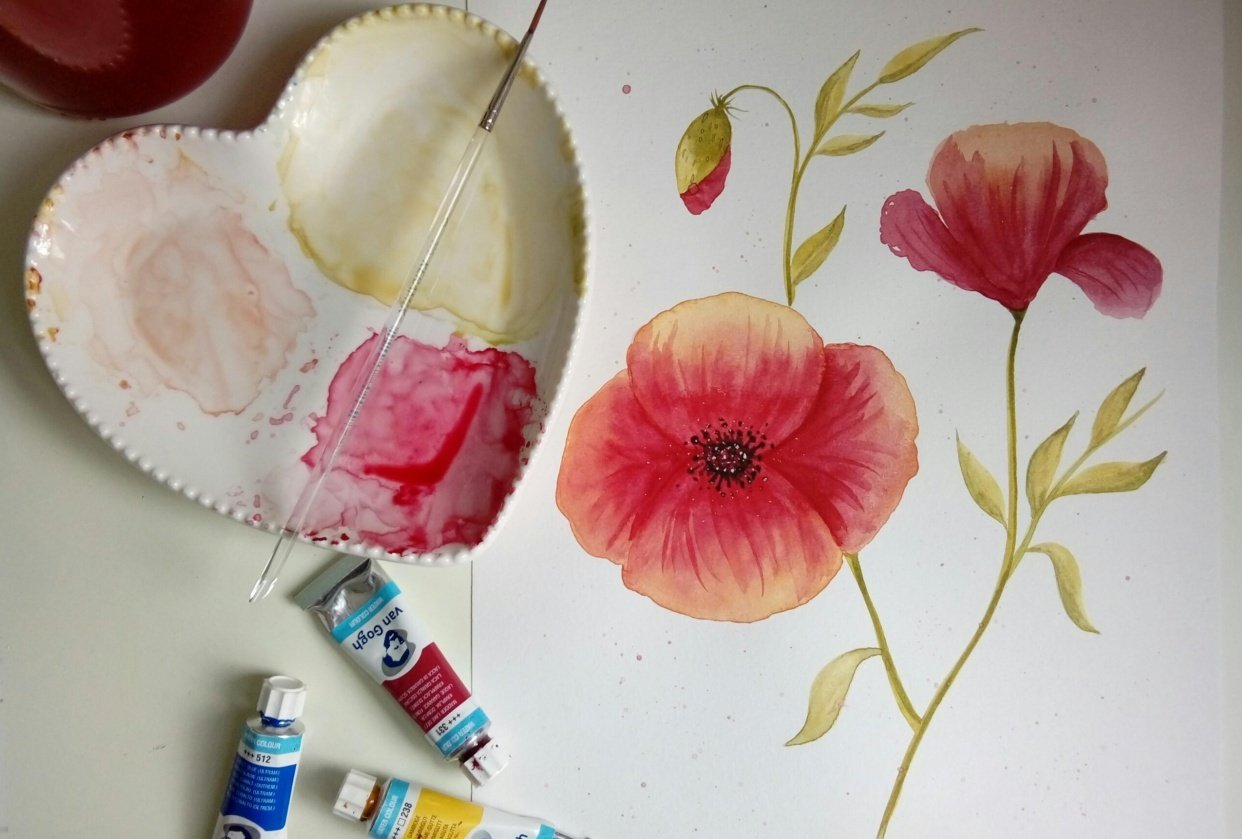 Watercolor Poppy - student project