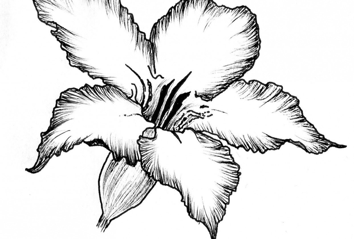 Ink flower - student project
